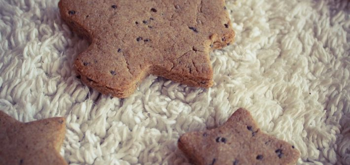 gluten free ginger biscuits